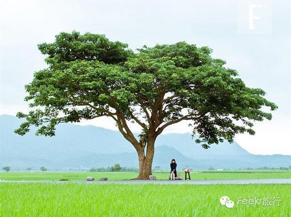 台湾最美的8条环岛骑行线路   走!再去一次台湾!