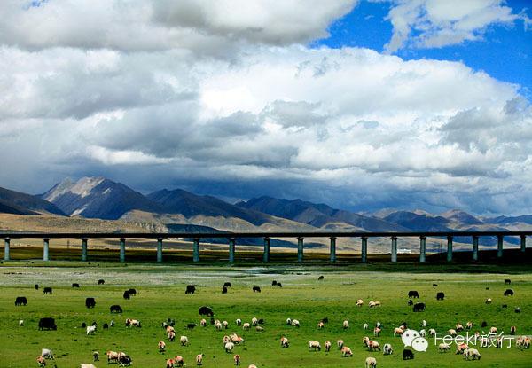 带你去看中国最美的火车线 | 流动的风景,在路上